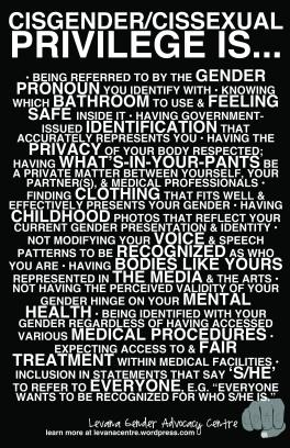 Cisgender/Cissexual Privilege is...