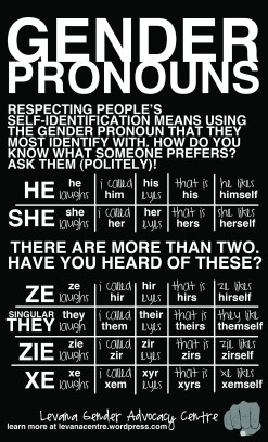 Gender Pronouns (8.5 x 14)
