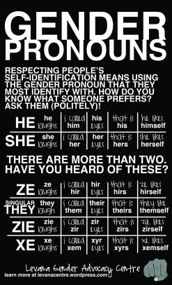 Gender Pronouns (8.5 x 14)