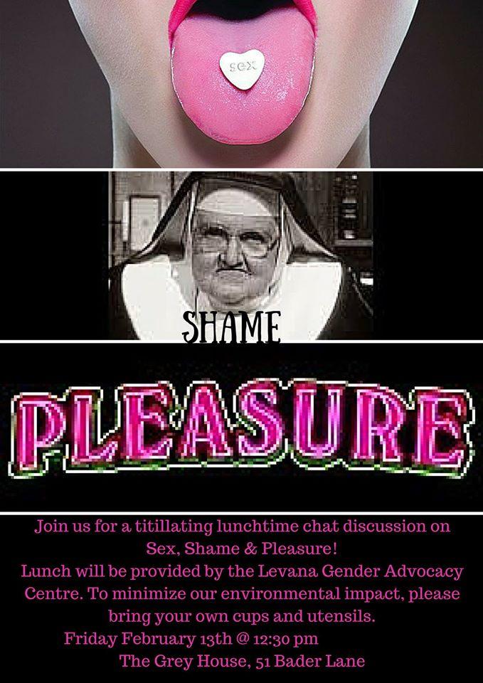 Poster for 'Sex, Shame, & Pleasure'. Description below.